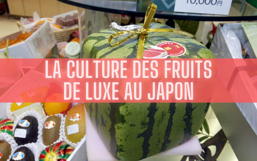 culture des fruits de luxe au Japon