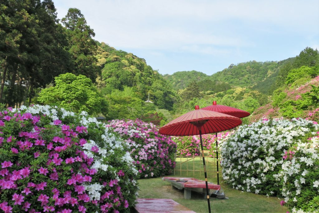 Temple Mimurotoji fleurs