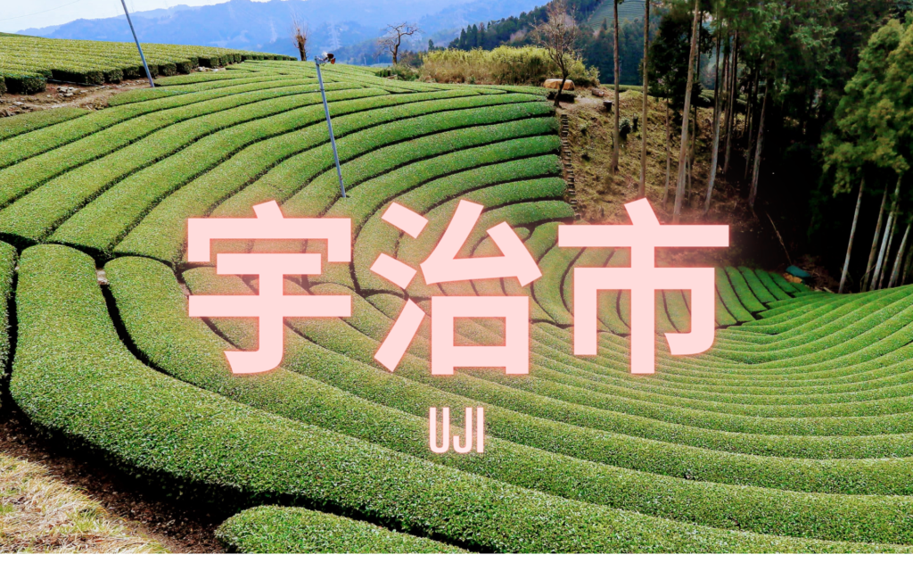 Uji 宇治市 Visite